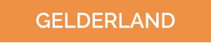 Dubbelwandig rookkanaal Gelderland